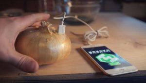 ricaricare smartphone cipolla video